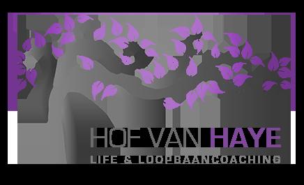 Hof van Haye